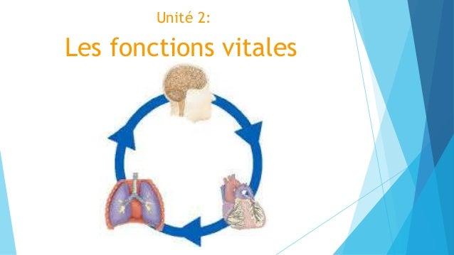 Unité 2: Les fonctions vitales