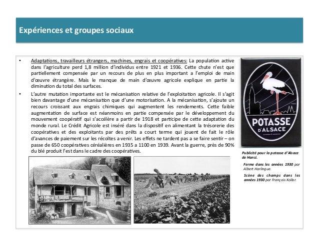 Expériences  et  groupes  sociaux   • Adapta:ons,  travailleurs  étrangers,  machines,  engrais  et  ...