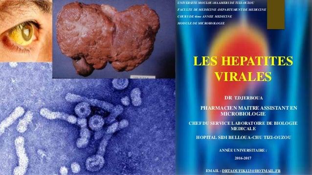 Les hepatites virales
