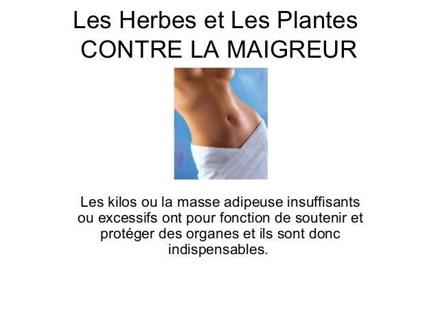Les Herbes et Les Plantes CONTRE LA MAIGREURLes kilos ou la masse adipeuse insuffisantsou excessifs ont pour fonction de s...