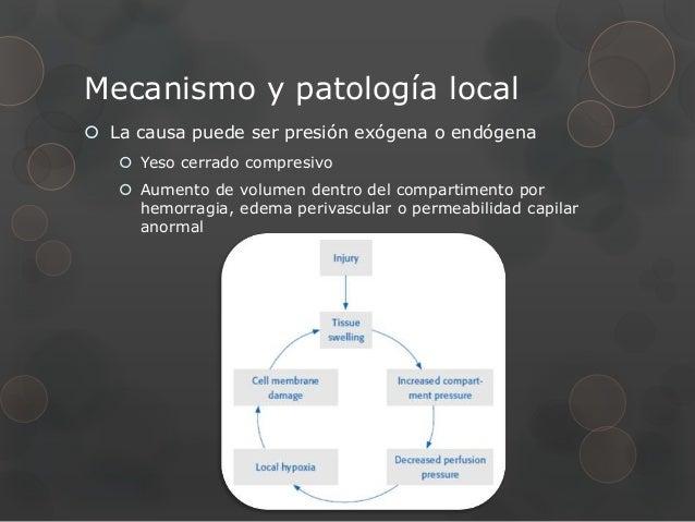 Mecanismo y patología local La causa puede ser presión exógena o endógena    Yeso cerrado compresivo    Aumento de volu...