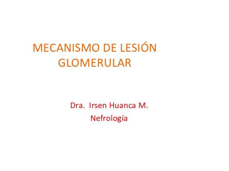 MECANISMO DE LESIÓN GLOMERULAR Dra.  Irsen Huanca M. Nefrología