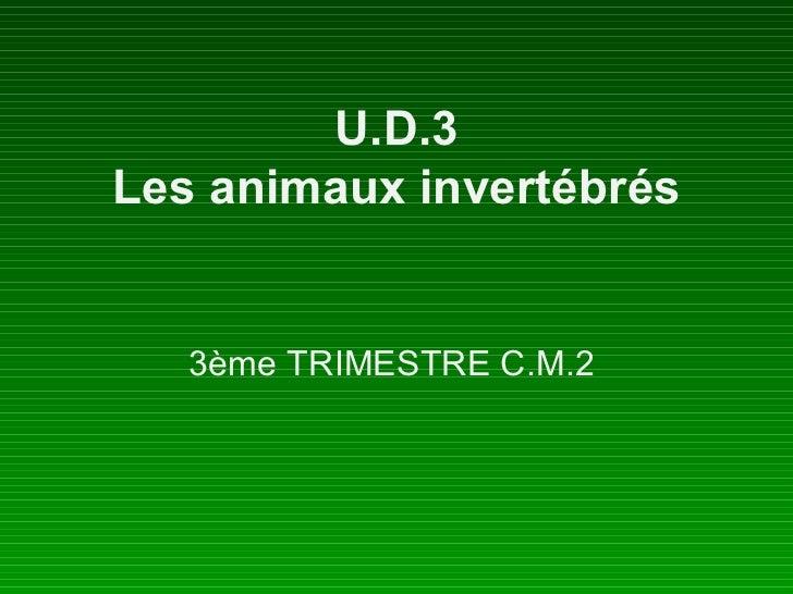 U.D.3 Les animaux invertébrés 3ème TRIMESTRE C.M.2
