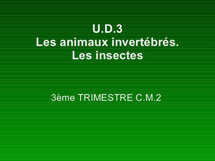 U.D.3 Les animaux invertébrés. Les insectes 3ème TRIMESTRE C.M.2