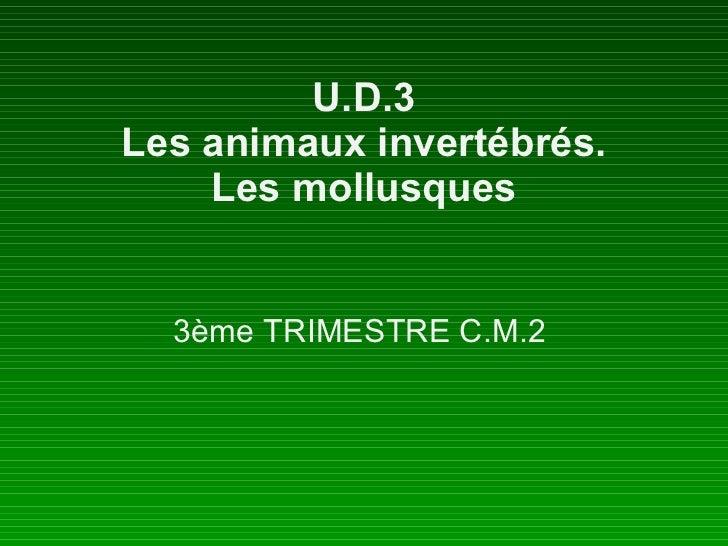 U.D.3 Les animaux invertébrés. Les mollusques 3ème TRIMESTRE C.M.2