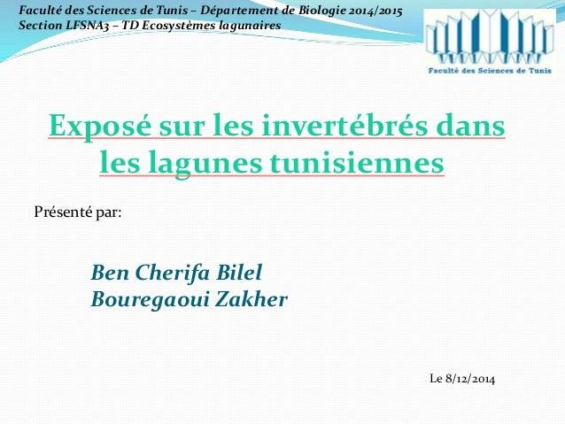 Exposé sur les invertébrés dans les lagunes tunisiennes Présenté par: Ben Cherifa Bilel Bouregaoui Zakher Le 8/12/2014 Fac...