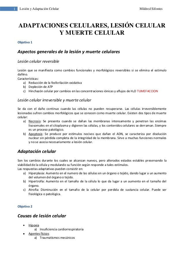 1 Lesión y Adaptación Celular Mildred SifontesADAPTACIONES CELULARES, LESIÓN CELULARY MUERTE CELULARObjetivo 1Aspectos gen...