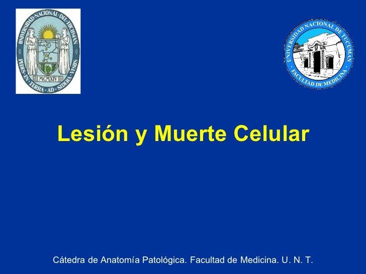 Lesión y Muerte Celular Cátedra de Anatomía Patológica. Facultad de Medicina. U. N. T.