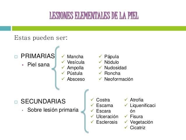 Tracciones cutaneas y esqueleticas ppt to pdf