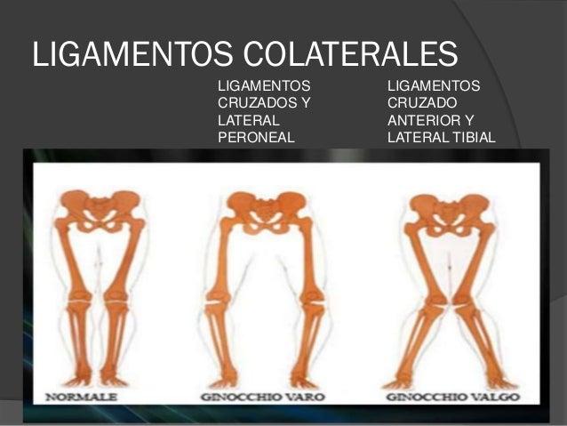 Lesiones meniscales y ligamentarias de la rodilla