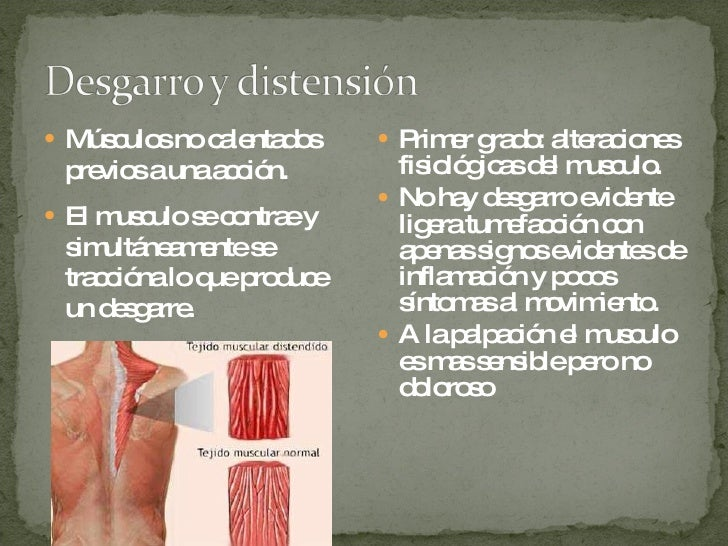 <ul><li>Músculos no calentados previos a una acción. </li></ul><ul><li>El musculo se contrae y simultáneamente se tracción...