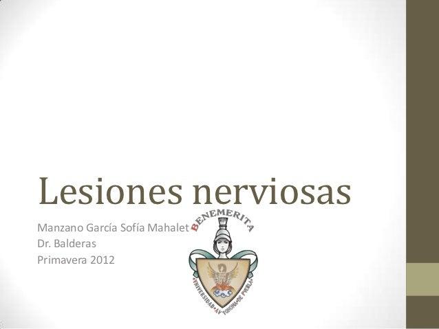 Lesiones nerviosasManzano García Sofía MahaletDr. BalderasPrimavera 2012