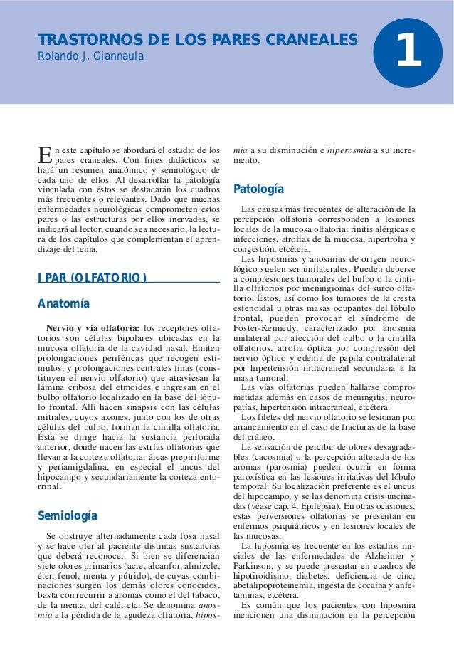 Lesiones oculares. cuadrantopsias