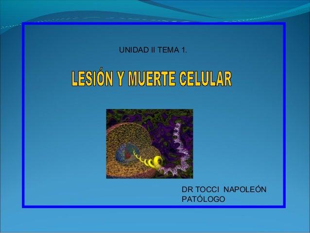 UNIDAD II TEMA 1.               DR TOCCI NAPOLEÓN               PATÓLOGO