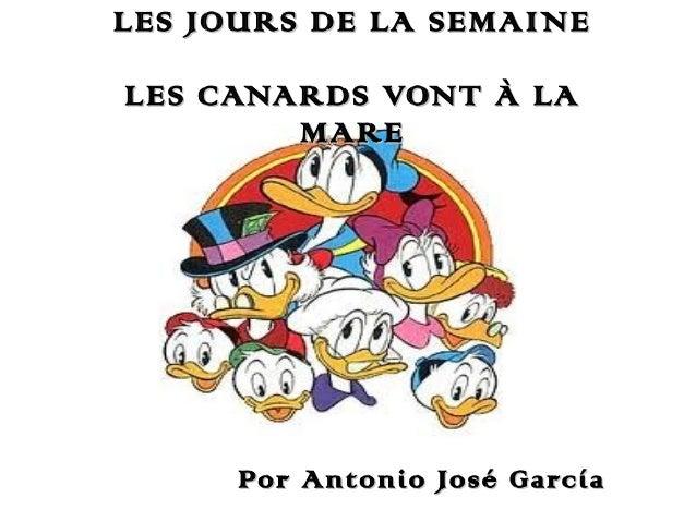 LES JOURS DE LA SEMAINE LES CANARDS VONT À LA MARE  Por Antonio José García