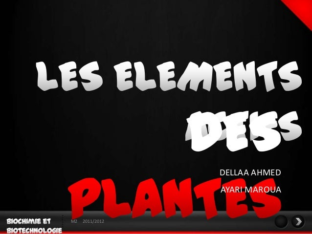 DES                  DELLAA AHMED                  AYARI MAROUAM2   2011/2012