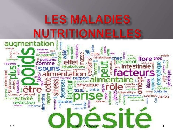 LES MALADIES NUTRITIONNELLES<br />C2i <br />1<br />ABEJEAN Nicolas<br />