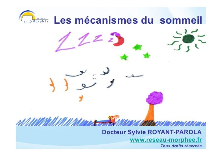 Les mécanismes du sommeil  Sylvie Royant-Parola     Réseau Morphée    www.reseau-morphee.fr           Docteur Sylvie ROYAN...