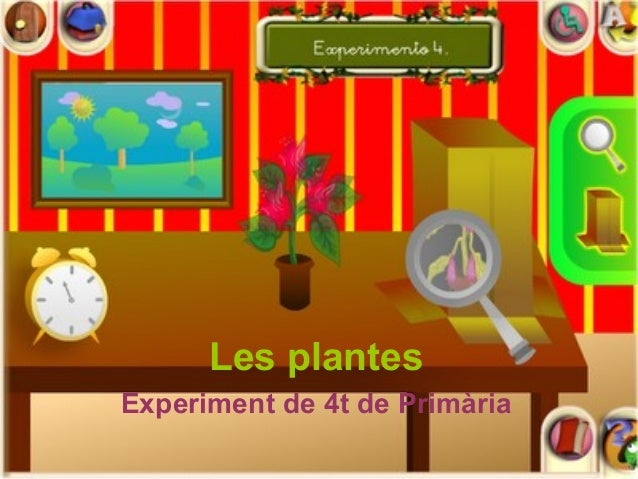 Les plantes Experiment de 4t de Primària