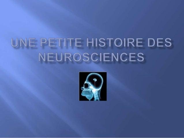  Ensemble des disciplines étudiant le système nerveux. (Ce sont la neurobiologie, la neurochimie, la neurohistologie, la ...