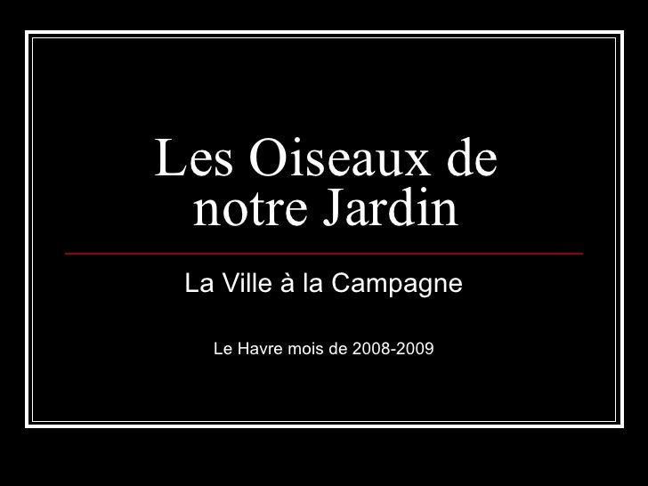 Les Oiseaux de notre Jardin La Ville à la Campagne Le Havre mois de 2008-2009