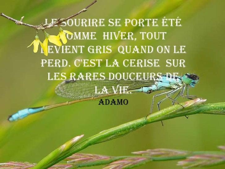 Adamo - Comme Toujours / Ceux Que J'Aime