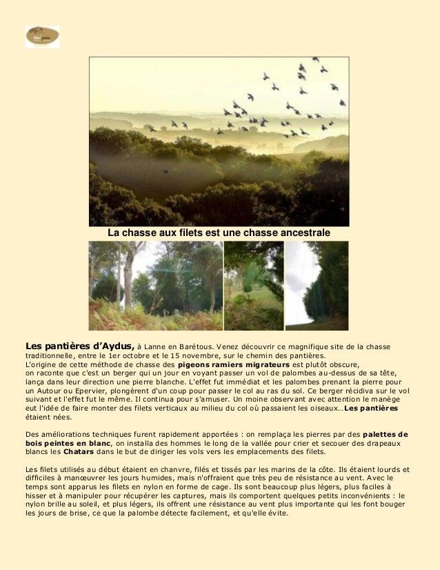 La chasse aux filets est une chasse ancestraleLes pantières d'Aydus, à Lanne en Barétous. Venez découvrir ce magnifique si...