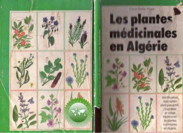 Les plantes médicinales en Algérie