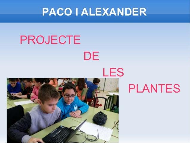 Les plantes per paco i alexander for Les plantes