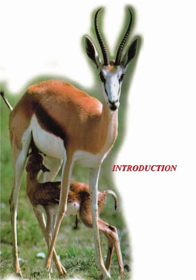 LA CONSCIENCE ANIMALE : UNE VOIE SANS ISSUE POUR LA THEORIE DE L'EVOLUTION LA CONSCIENCE ANIMALE : UNE VOIE SANS ISSUE POU...