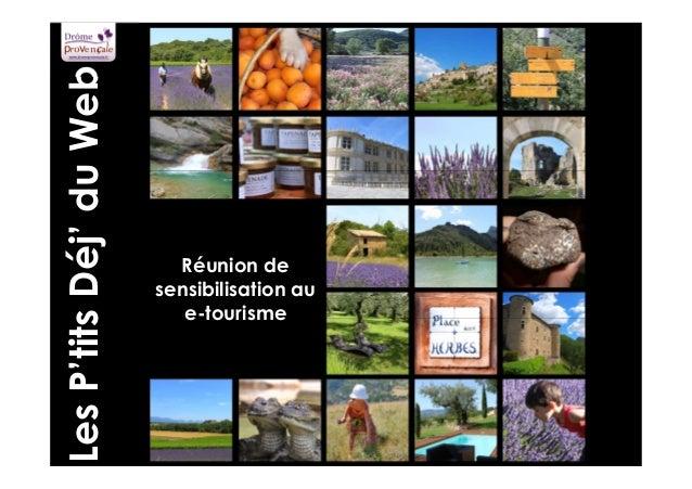 Réunion de  sensibilisation au  e-tourisme  Atelier #2 E-réputation - Syviane Schoepfer  A.N.T. de la Drôme Provençale  Le...