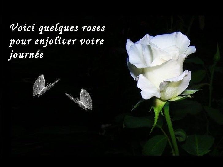 Voici quelques rosespour enjoliver votrejournée