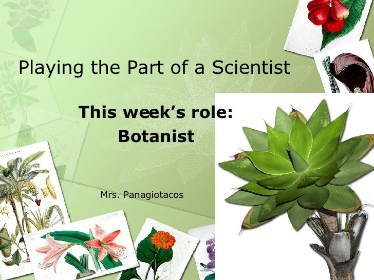 Playing the Part of a Scientist This week's role: Botanist Mrs. Panagiotacos