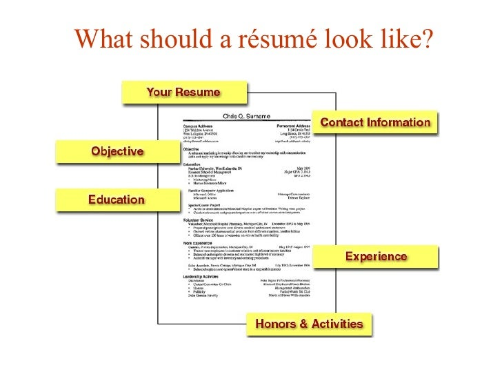 What Should A Résumé Look Like?  What Should Be In A Resume