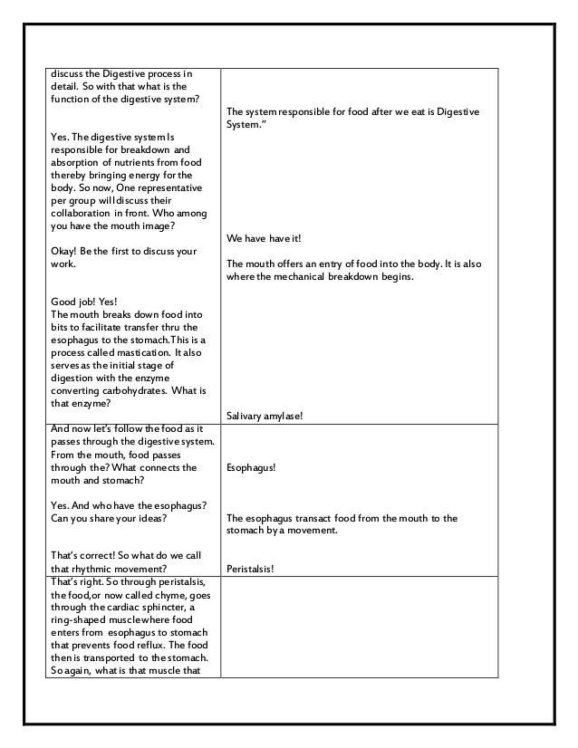 Detailed Lesson plan Sample Digestive Process – Digestive System Worksheet High School