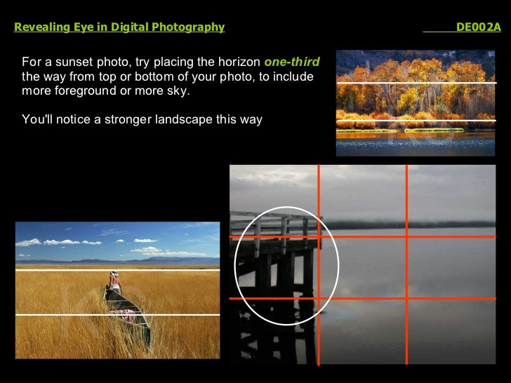Revealing Eye in Digital Photography   DE002A For a sunset photo, try placing the horizon  one-third   the way from top or...