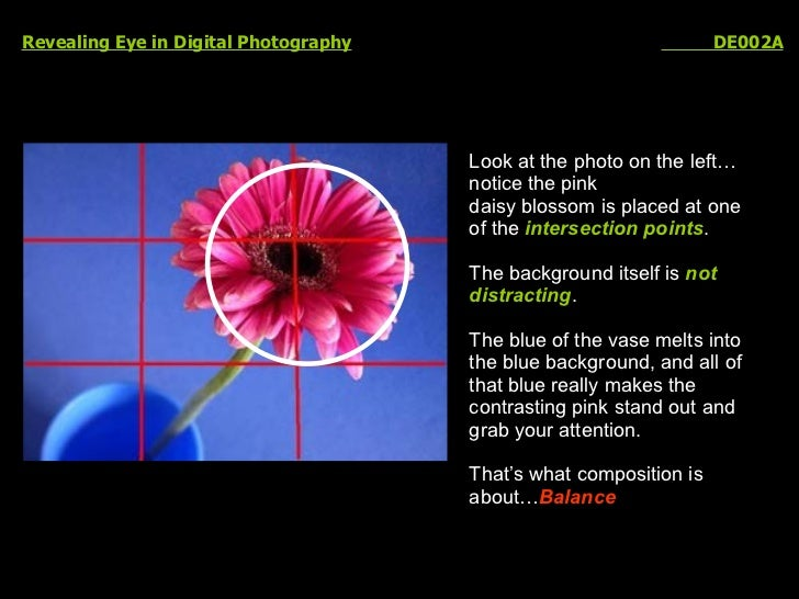 Revealing Eye in Digital Photography   DE002A Look at the photo on the left…notice the pink  daisy blossom is placed at on...