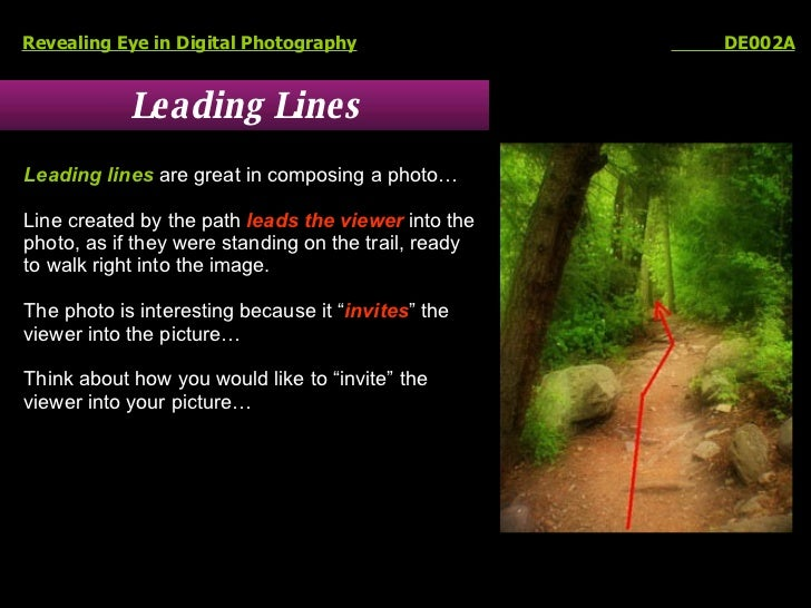 Leading Lines Revealing Eye in Digital Photography   DE002A Leading lines  are great in composing a photo… Line created by...