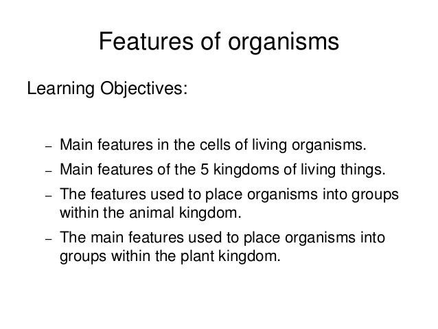 Lesson 3 Features Of Organisms And Kingdoms