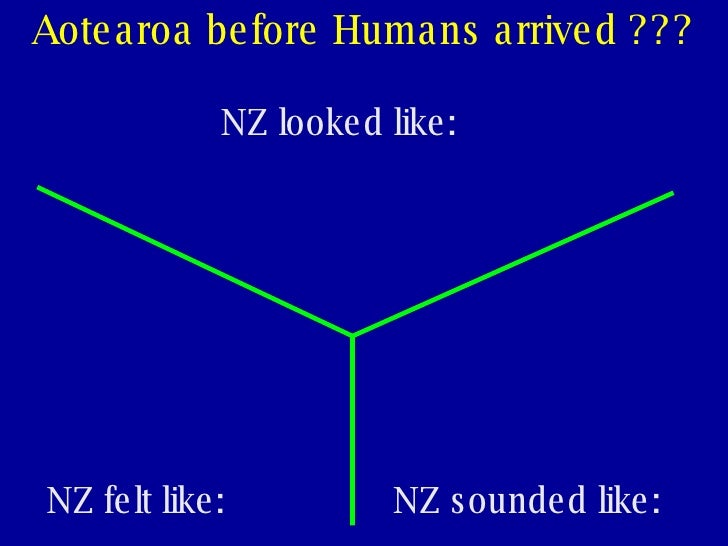 Lesson 3 - What was NZ like before Europeans? Slide 3