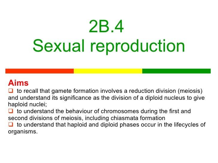 2B.4  Sexual reproduction <ul><li>Aims </li></ul><ul><li>to recall that gamete formation involves a reduction division (me...