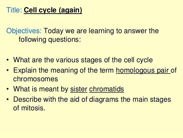 Title: Cell cycle (again) Objectives: Today we are learning to answer the following questions: • What are the various stag...