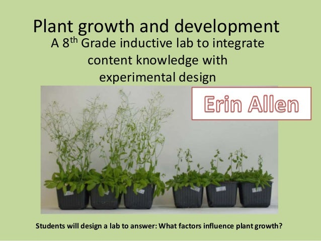 Teaching & Learning - lesson overviews  Slide 2