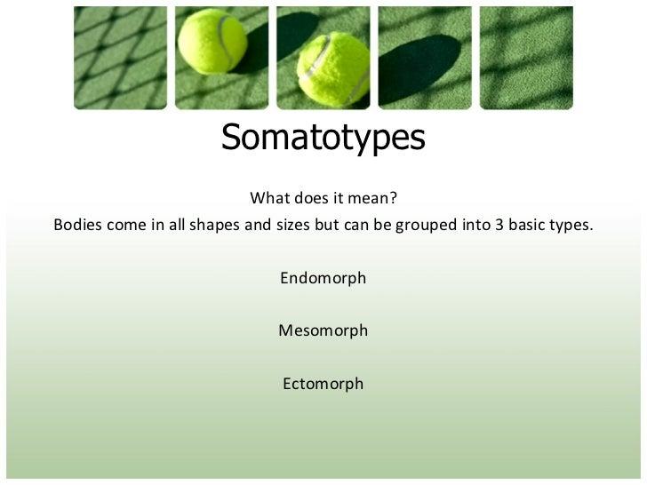 1.2.1 Lesson 1 - somatotypes Slide 3