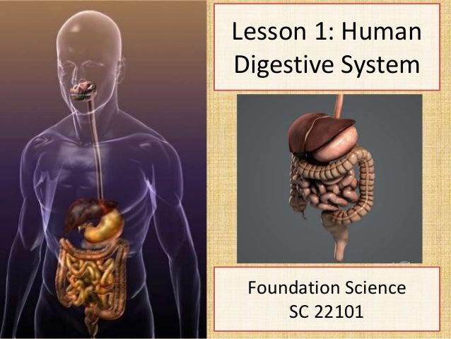 Lesson 1: HumanDigestive SystemFoundation ScienceSC 22101