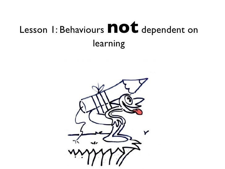 Lesson 1 behaviours not dependent on learning