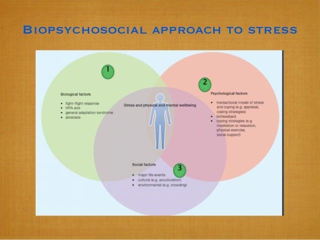 Biopsychosocial approach to stress
