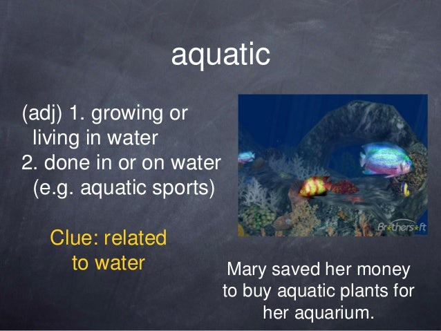aquatic(adj) 1. growing or living in water2. done in or on water (e.g. aquatic sports)   Clue: related     to water       ...