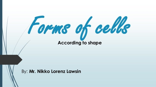 Forms of cells By: Mr. Nikko Lorenz Lawsin According to shape