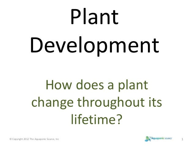 Plant  Development  How does a plant  change throughout its  lifetime?  © Copyright 2012 The Aquaponic Source, Inc 1